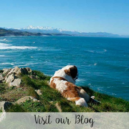 blog_ingles