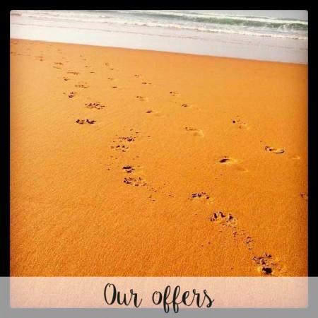ofertas_ingles