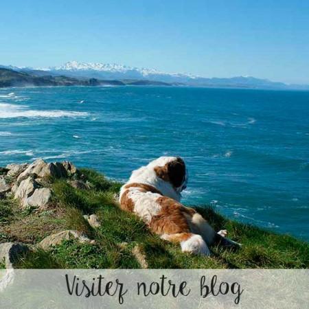 blog_frances