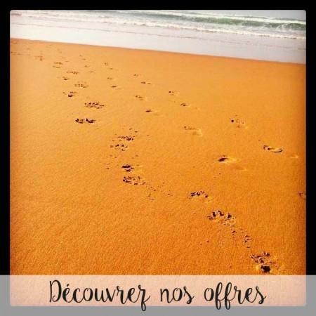ofertas_frances